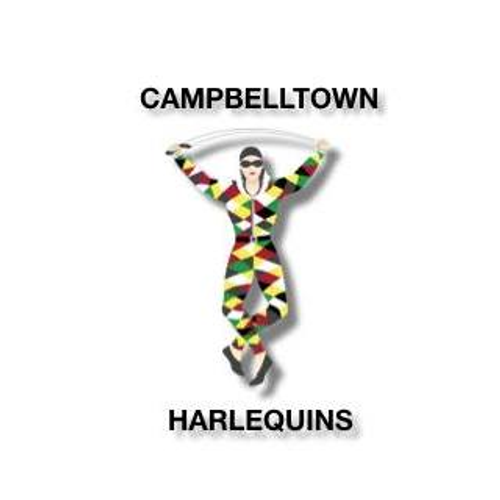 Harlequins U12's
