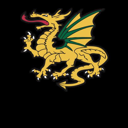 Dragons U6's